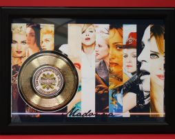 MADONNA-UNIQUE-LARGE-FRAMED-24kt-GOLD-45-RECORD-DISPLAY-FREE-US-SHIPPING-170951352186