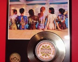 PINK-FLOYD-GOLD-45-RECORD-LIMITED-EDITION-DISPLAY-170643219996