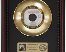 STEVIE-NICKS-I-CANT-WAIT-GOLD-RECORD-FRAMED-CHERRYWOOD-DISPLAY-K1-172204414476