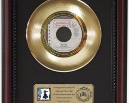 STEVIE-NICKS-TALK-TO-ME-GOLD-RECORD-FRAMED-CHERRYWOOD-DISPLAY-K1-182129070466