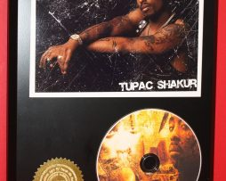 TUPAC-SHAKUR-LIMITED-EDITION-PICTURE-CD-DISC-COLLECTIBLE-RARE-GIFT-WALL-ART-180895471056
