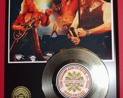 WHITESNAKE-GOLD-45-RECORD-LTD-EDITION-DISPLAY-AWARD-QUALITY-SHIPS-FREE-170661798936