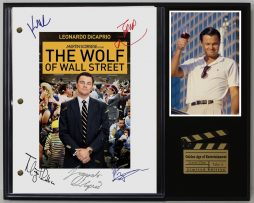 WOLF-OF-WALL-STREET-LTD-EDITION-REPRODUCTION-MOVIE-SCRIPT-CINEMA-DISPLAY-C3-172204095736