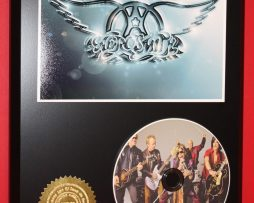 AEROSMITH-LTD-EDITION-PICTURE-CD-DISC-DISPLAY-181454674397