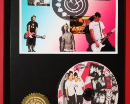 BLINK-182-LIMITED-EDITION-PICTURE-CD-DISC-COLLECTIBLE-RARE-MUSIC-DISPLAY-170836214087