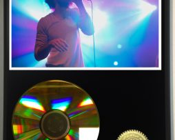 EDWARD-SHARPE-AND-THE-MAGNETIC-ZEROS-LIMITED-EDITION-24kt-GOLD-CD-DISPLAY-181456521427