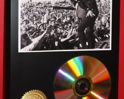 ELVIS-PRESLEY-LTD-EDITION-24kt-GOLD-CD-DISC-COLLECTIBLE-AWARD-QUALITY-DISPLAY-181434131457