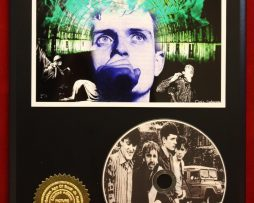 JOY-DIVISION-LTD-EDITION-PICTURE-CD-DISC-DISPLAY-171375751027