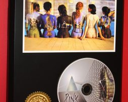 PINK-FLOYD-LIMITED-EDITION-PICTURE-CD-DISC-RARE-COLLECTIBLE-MUSIC-DISPLAY-180857953077