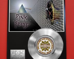 PINK-FLOYD-PLATINUM-RECORD-LTD-EDITION-RARE-COLLECTIBLE-MUSIC-GIFT-AWARD-170867106927