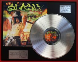 PLATINUM RECORD DISPLAYS