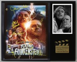YOUNG-FRANKENSTEIN-LTD-EDITION-REPRODUCTION-MOVIE-SCRIPT-CINEMA-DISPLAY-C3-171798869727