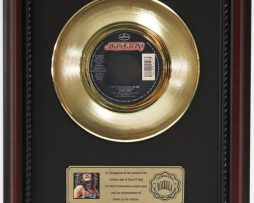 BON-JOVI-LAY-YOUR-HEAD-ON-ME-GOLD-RECORD-CUSTOM-FRAMED-CHERRYWOOD-DISPLAY-K1-172164188938