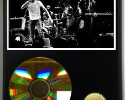CHILDISH-GAMBINO-LIMITED-EDITION-24kt-GOLD-CD-DISPLAY-181456512448