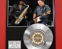 CLERENCE-CLEMMONS-PLATINUM-RECORD-LIMITED-EDITION-RARE-COLLECTIBLE-MUSIC-DISPLAY-170851833968