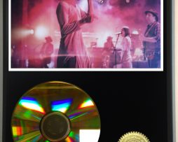 EDWARD-SHARPE-AND-THE-MAGNETIC-ZEROS-LIMITED-EDITION-24kt-GOLD-CD-DISPLAY-171376837958