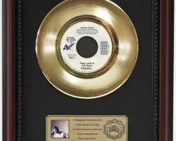 HUEY-LEWIS-PERFECT-WORLD-GOLD-RECORD-CUSTOM-FRAMED-CHERRYWOOD-DISPLAY-K1-182089340148