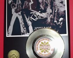 JIMMY-PAGE-LIMITED-EDITION-GOLD-45-RECORD-DISPLAY-181453667048