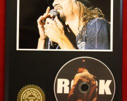 KID-ROCK-LIMITED-EDITION-PICTURE-CD-DISC-COLLECTIBLE-RARE-GIFT-WALL-ART-170865813038