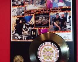 LIMP-BIZKIT-GOLD-45-RECORD-LIMITED-EDITION-DISPLAY-170644392378