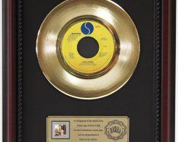 MADONNA-LIKE-A-VIRGIN-GOLD-RECORD-FRAMED-CHERRYWOOD-DISPLAY-K1-172204363278