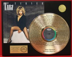TINA-TURNER-GOLD-LP-RECORD-LASER-ETCHED-W-LYRICS-PLAYS-SONG-PRIVATE-DANCER-171012539568