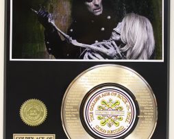 ALICE-COOPER-GOLD-RECORD-LIMITED-EDITION-LASER-ETCHED-WITH-SONGS-LYRICS-171367758719