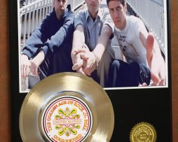 BEASTIE-BOYS-ADAM-YAUCH-MUSIC-MEMORABILIA-24kt-GOLD-RECORD-LTD-EDITION-DISPLAY-170836383489