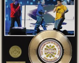 BEASTIE-BOYS-GOLD-RECORD-LIMITED-EDITION-LASER-ETCHED-WITH-SONGS-LYRICS-181447647149