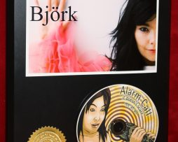BJORK-LTD-EDITION-PICTURE-CD-COLLECTIBLE-AWARD-QUALITY-DISPLAY-170861226459