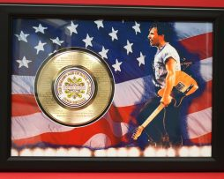 BRUCE-SPRINGSTEEN-LARGE-FRAMED-24kt-GOLD-45-RECORD-DISPLAY-FREE-SHIPPING-170949743499
