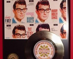 BUDDY-HOLLY-GOLD-45-RECORD-LIMITED-EDITION-DISPLAY-171368555089