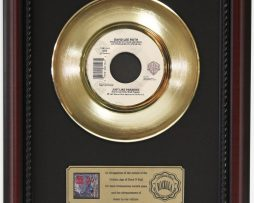 DAVID-LEE-ROTH-LIKE-PARADISE-GOLD-RECORD-CUSTOM-FRAME-CHERRYWOOD-DISPLAY-K1-172164195899