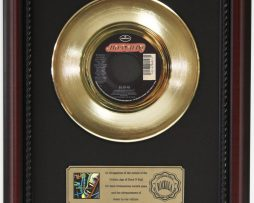DEF-LEPPARD-ARMAGEDDON-IT-GOLD-RECORD-CUSTOM-FRAMED-CHERRYWOOD-DISPLAY-K1-182089298129