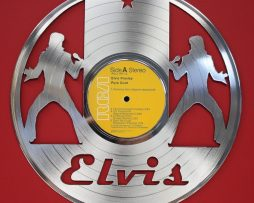 Elvis-Presley-Platinum-Laser-Etched-LTD-Edition-12-LP-Record-Wall-Display-171390771039