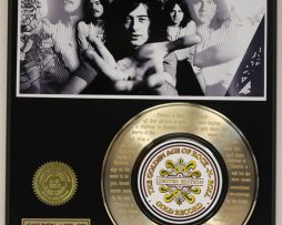 LED-ZEPPELIN-STAIRWAY-GOLD-RECORD-LTD-EDITION-LASER-ETCHED-WITH-SONGS-LYRIC-171374656659