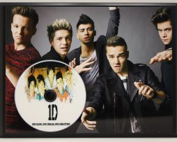 ONE-DIRECTION-PICTURE-CD-LTD-EDITION-PLAQUE-FREE-US-PRIORITY-SHIPPING-181265878649