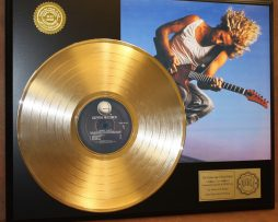 SAMMY-HAGAR-GOLD-LP-LTD-EDITION-RECORD-DISPLAY-AWARD-QUALITY-COLLECTIBLE-180908427099