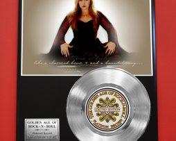 STEVIE-NICKS-PLATINUM-RECORD-LTD-EDITION-RARE-COLLECTIBLE-MUSIC-GIFT-AWARD-181578977269