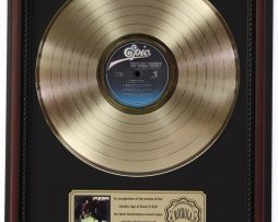 STEVIE-RAY-VAUGHAN-DOUBLE-TROUBLE-GOLD-LP-RECORD-FRAMED-CHERRYWOOD-DISPLAY-K1-182136973389