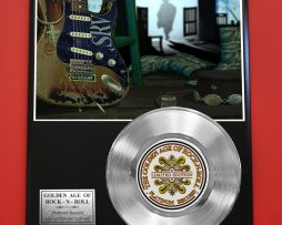 STEVIE-RAY-VAUGHAN-PLATINUM-RECORD-EDITION-RARE-COLLECTIBLE-MUSIC-GIFT-AWARD-180914554489