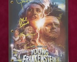 YOUNG-FRANKENSTEIN-MOVIE-SCRIPT-WITH-REPRODUCTION-SIGNATURES-Wilder-Feldman-C3-172257943369