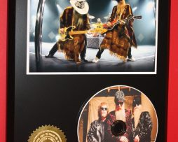 Z-Z-TOP-LIMITED-EDITION-PICTURE-CD-DISC-RARE-COLLECTIBLE-MUSIC-DISPLAY-171451418899