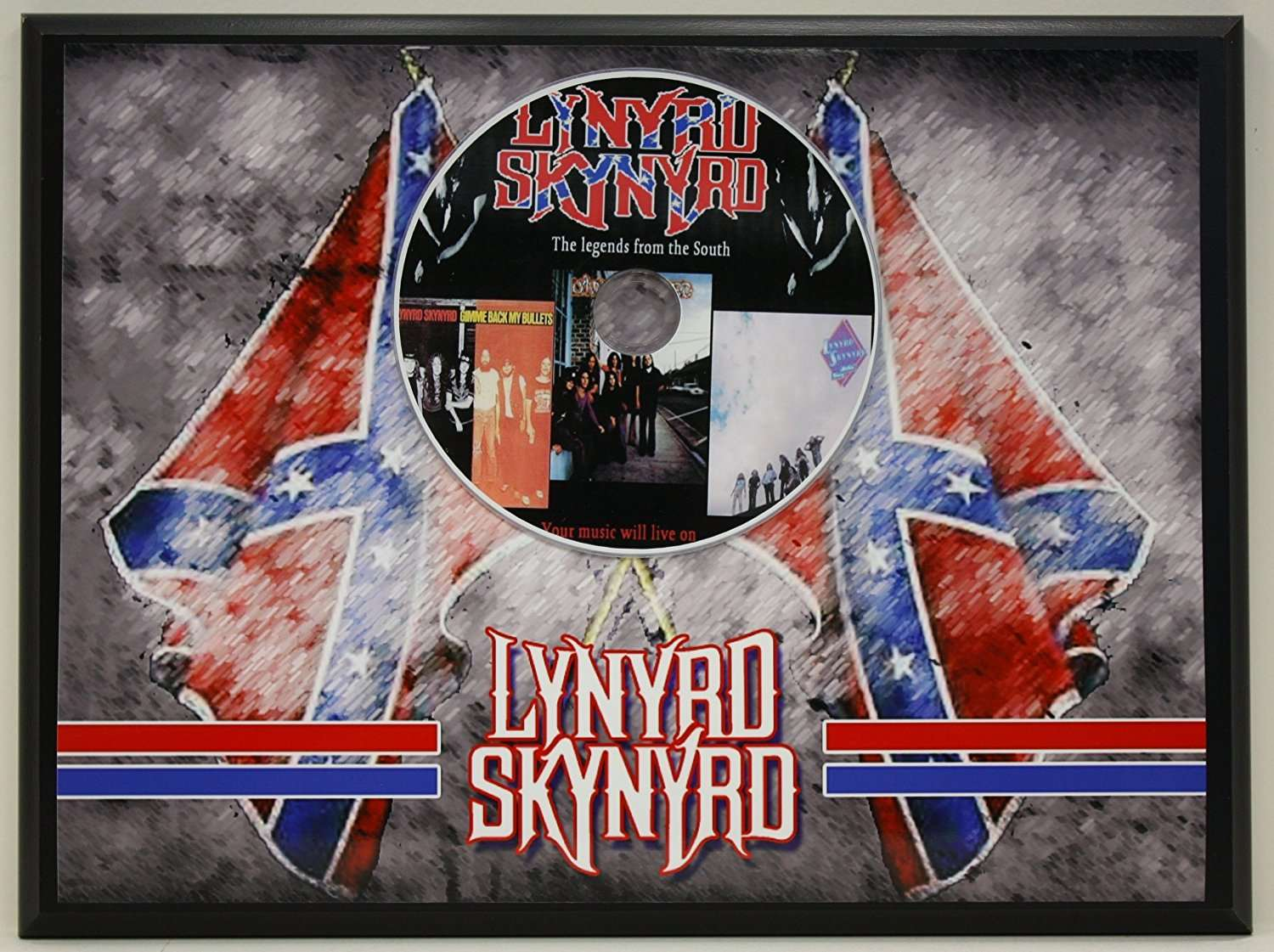 Lynyrd Skynyrd Limited Edition Picture Disc CD Rare Collectible Music  Display